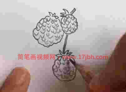 水果简笔画图片