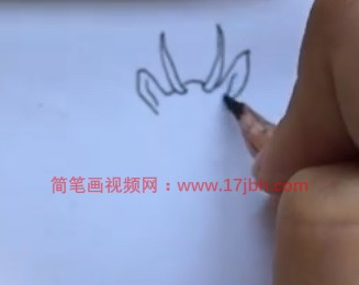 藏羚羊简笔画图片