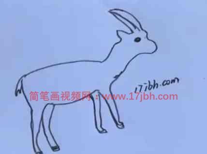 羚羊怎么画简笔画