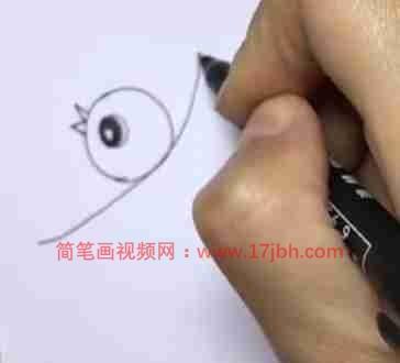 鸟的简笔画可爱
