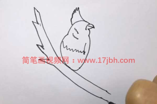 小鸟简笔画带颜色