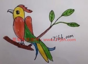 小鸟怎么画