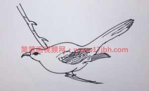 树上的小鸟简笔画彩色