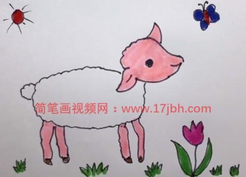 简笔画小羊的画法