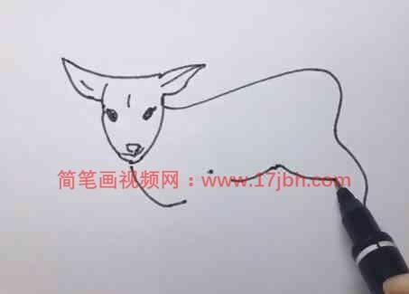 画羊简笔画步骤