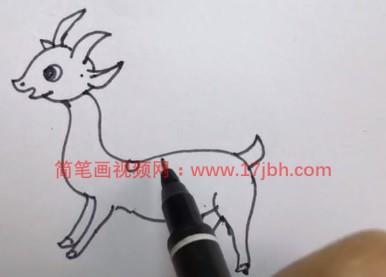 羊羔简笔画