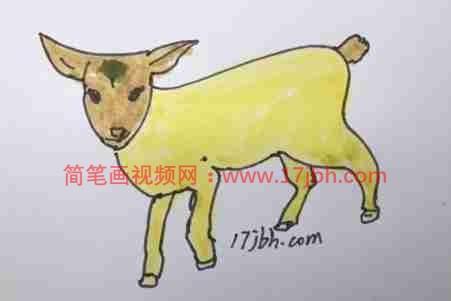 彩色好看的小羊图片