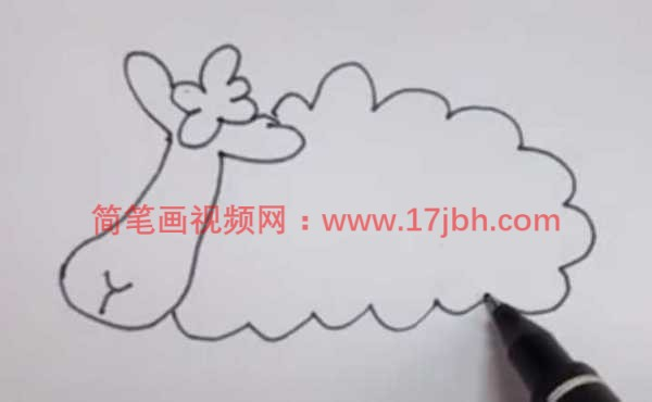 简笔画绵羊的画法