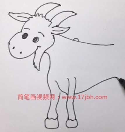 羊简笔画彩色