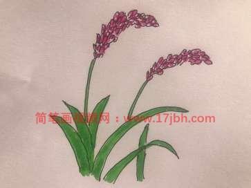 稻子图片简笔画