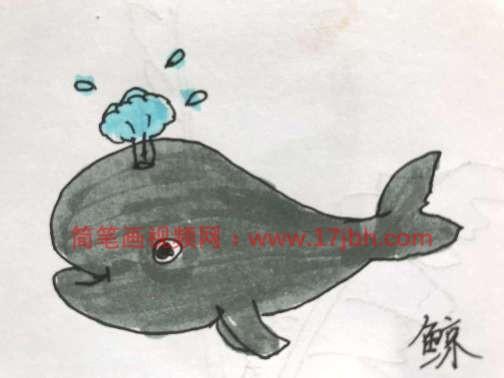蓝鲸简笔画