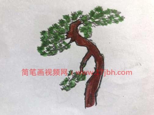 松树图片简笔画手绘