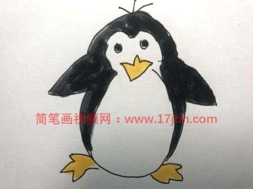 卡通企鹅简笔画图片