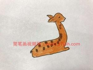 小动物简笔画