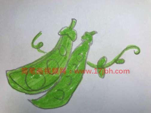 豌豆怎么画简笔画