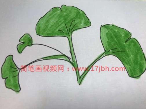 怎么画树叶的简笔画