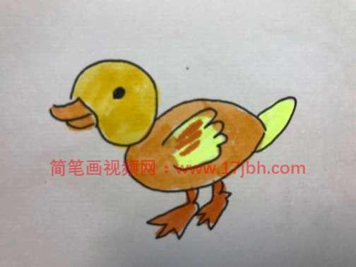 简笔画鸭子图片大全