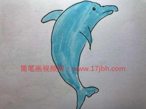 海豚简笔画