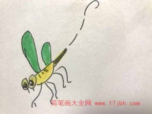 蜻蜓简笔画