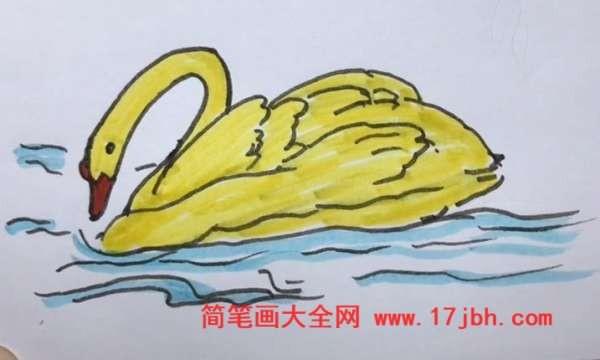 天鹅简笔画漂亮又简单