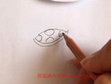简笔画乌龟涂色