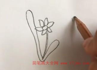 兰花简笔画