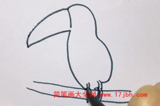 犀鸟简笔画图片大全