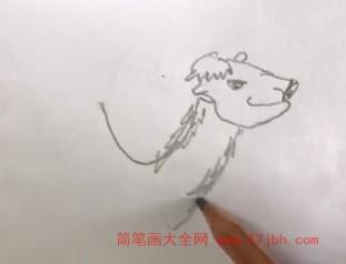 动物简笔画大全