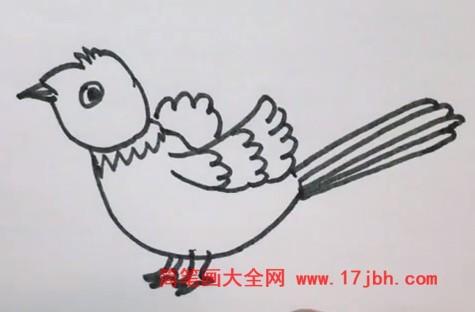 杜鹃鸟简笔画图片彩色