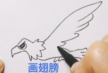 老鹰图片简笔画涂色