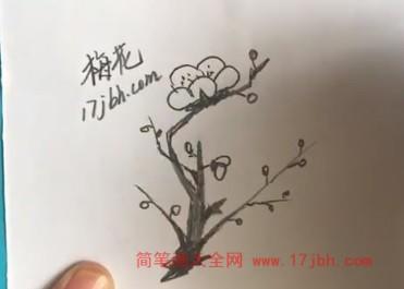 梅花简笔画