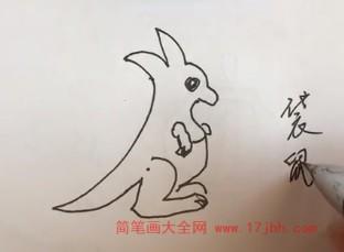 袋鼠简笔画图片