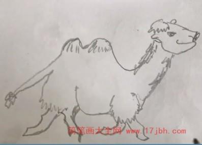 骆驼简笔画图片大全