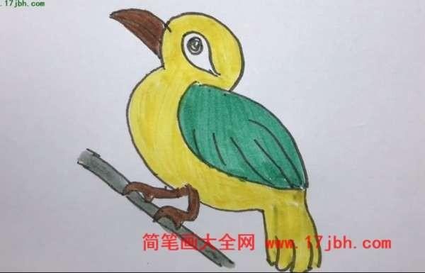 画眉鸟简笔画