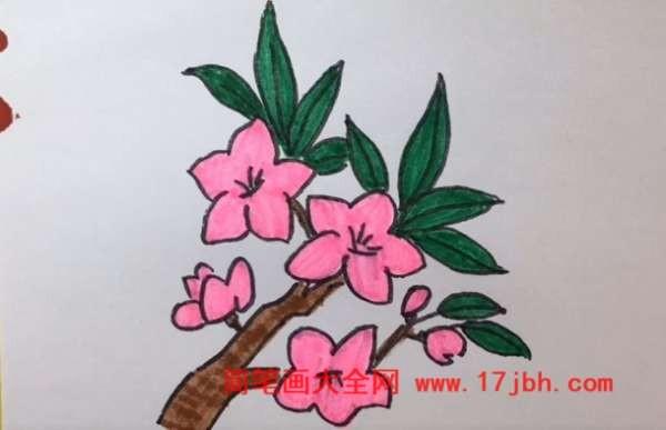 花朵怎么画
