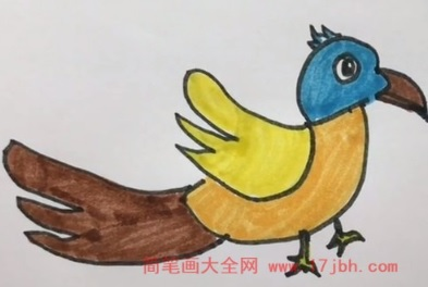鸟简笔画图片大全大图