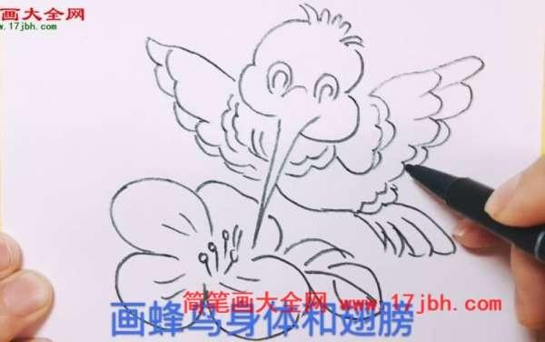蜂鸟怎么画好看