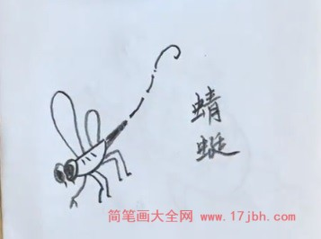 蜻蜓简笔画图片大全