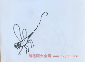 蜻蜓简笔画图片