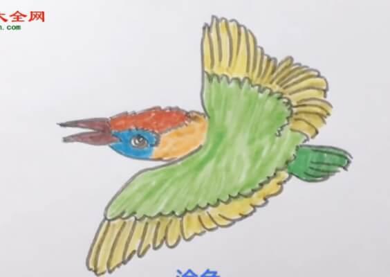 翠鸟儿童简笔画