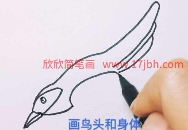 杜鹃鸟简笔画怎么画