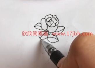 茶花简笔画
