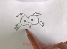猫头鹰简笔画图片大全