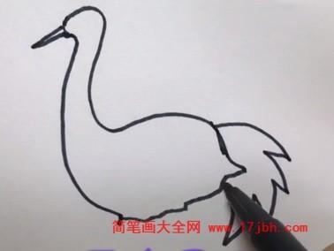 小鸟简笔画视频