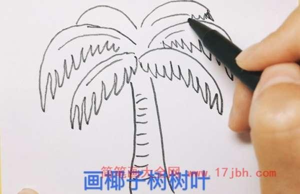 大椰子树简笔画图片