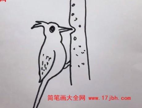 啄木鸟简笔画图片大全