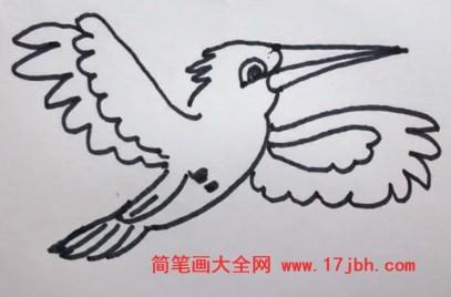 翠鸟简笔画图片大全