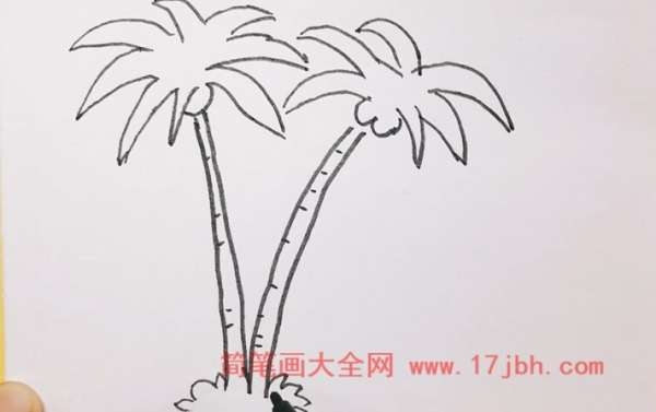 椰子树怎么画