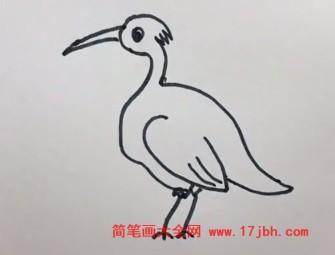 白鹭简笔画图片大全