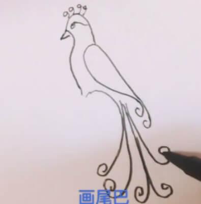 凤凰怎么画简笔画